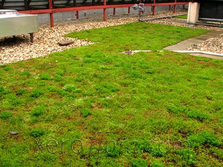 Water Environment Federation Building - Alexandria // VA