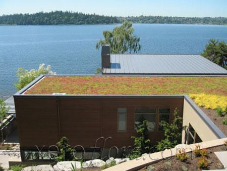 Mercer Island Residence - Mercer Island // WA