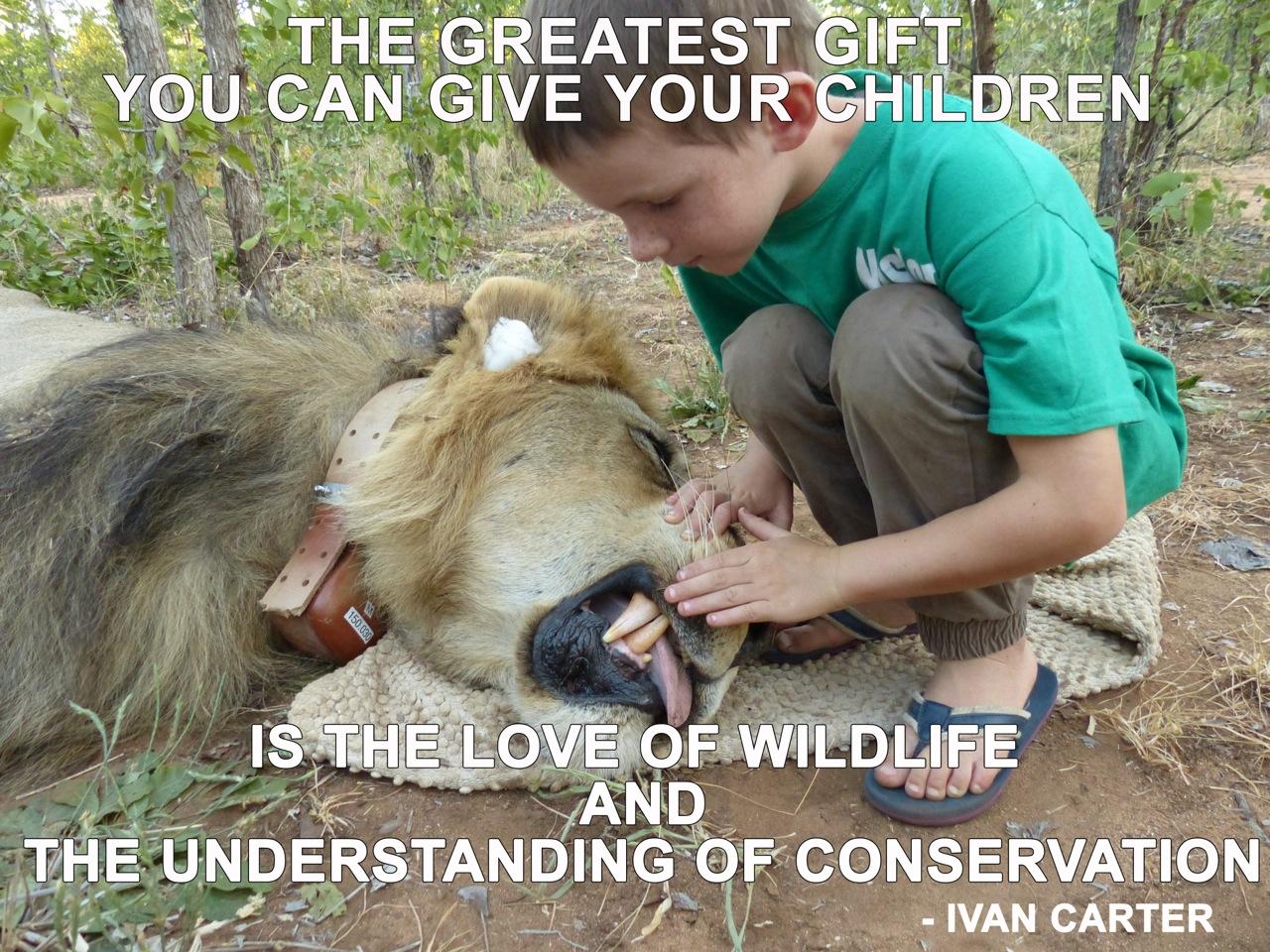 kids gift lion 2.jpeg