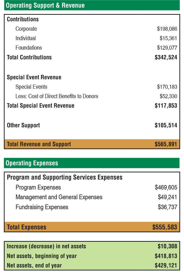 Financial Summary.png