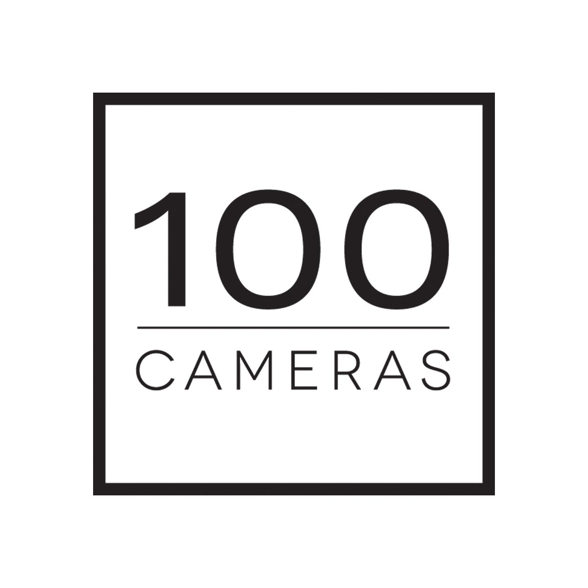 WorldPerspectiveDay_100camerasPartnerLogo.jpg