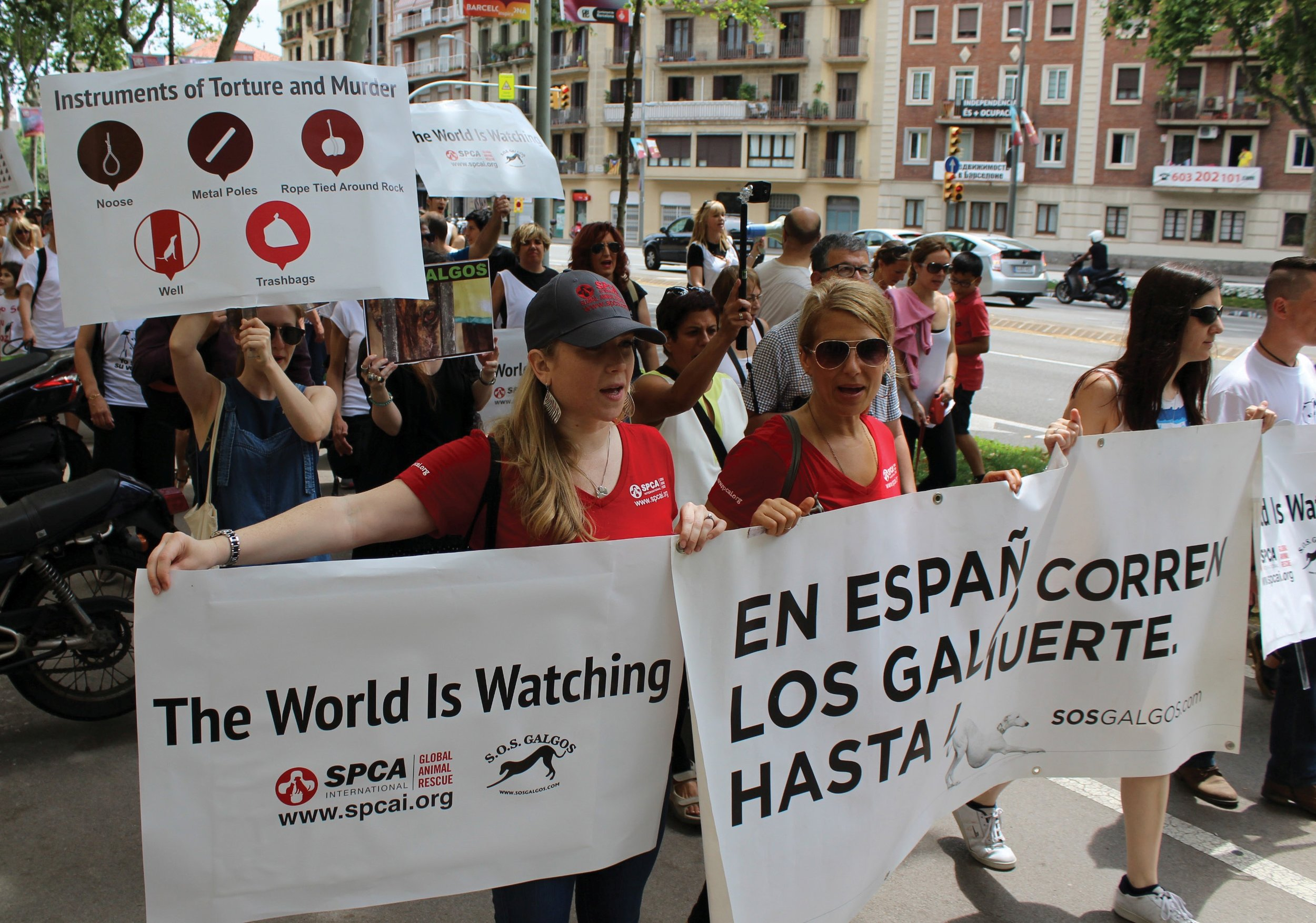 The SPCAI executive director and program manager march in a protest through the streets of Barcelona.