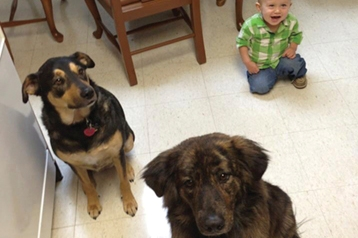 300th Operation Military Pets Grant