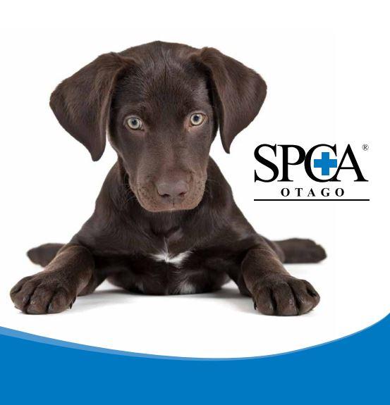 SPCA Otago.JPG