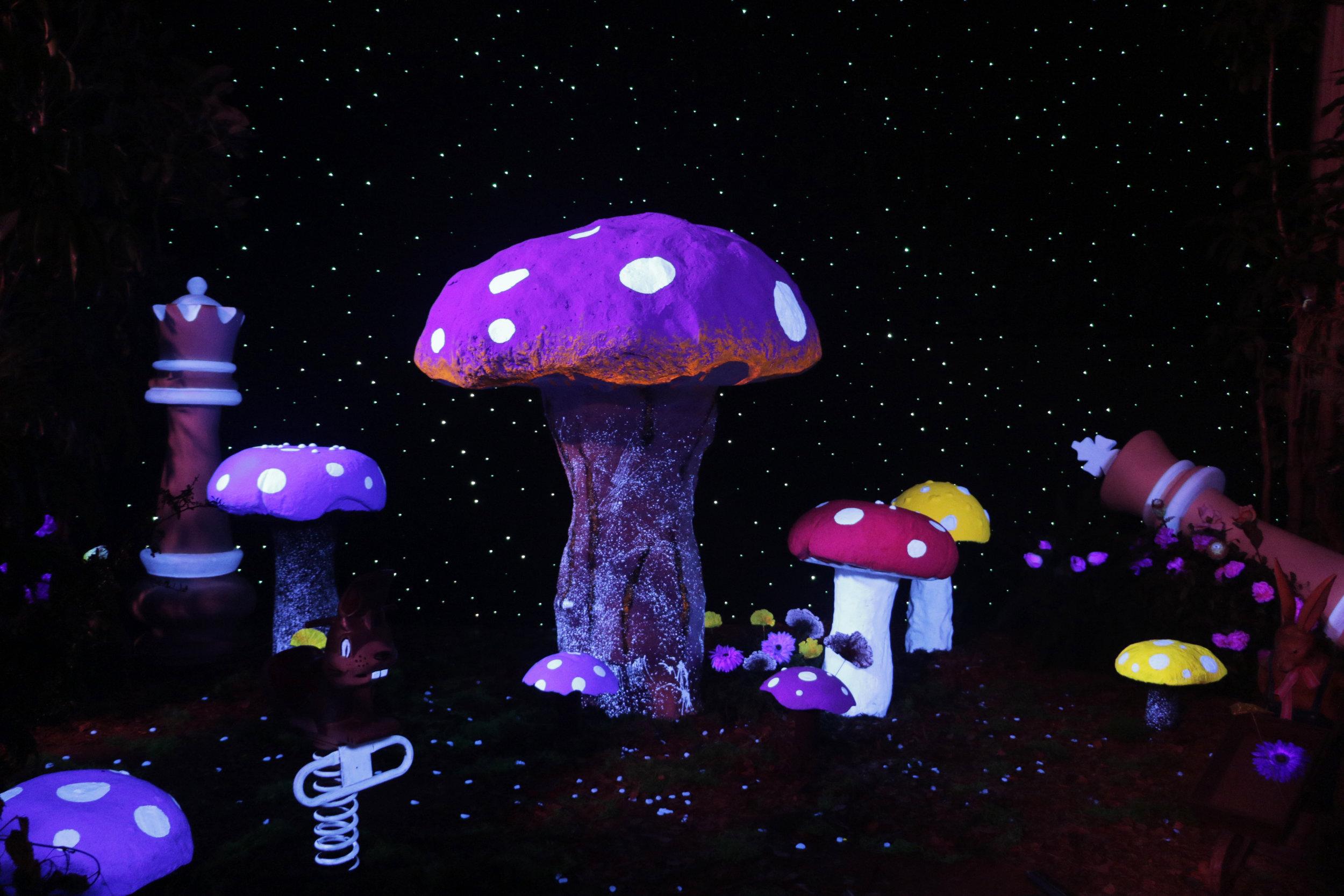 Kid Cudi Mushroom Set 1.jpg