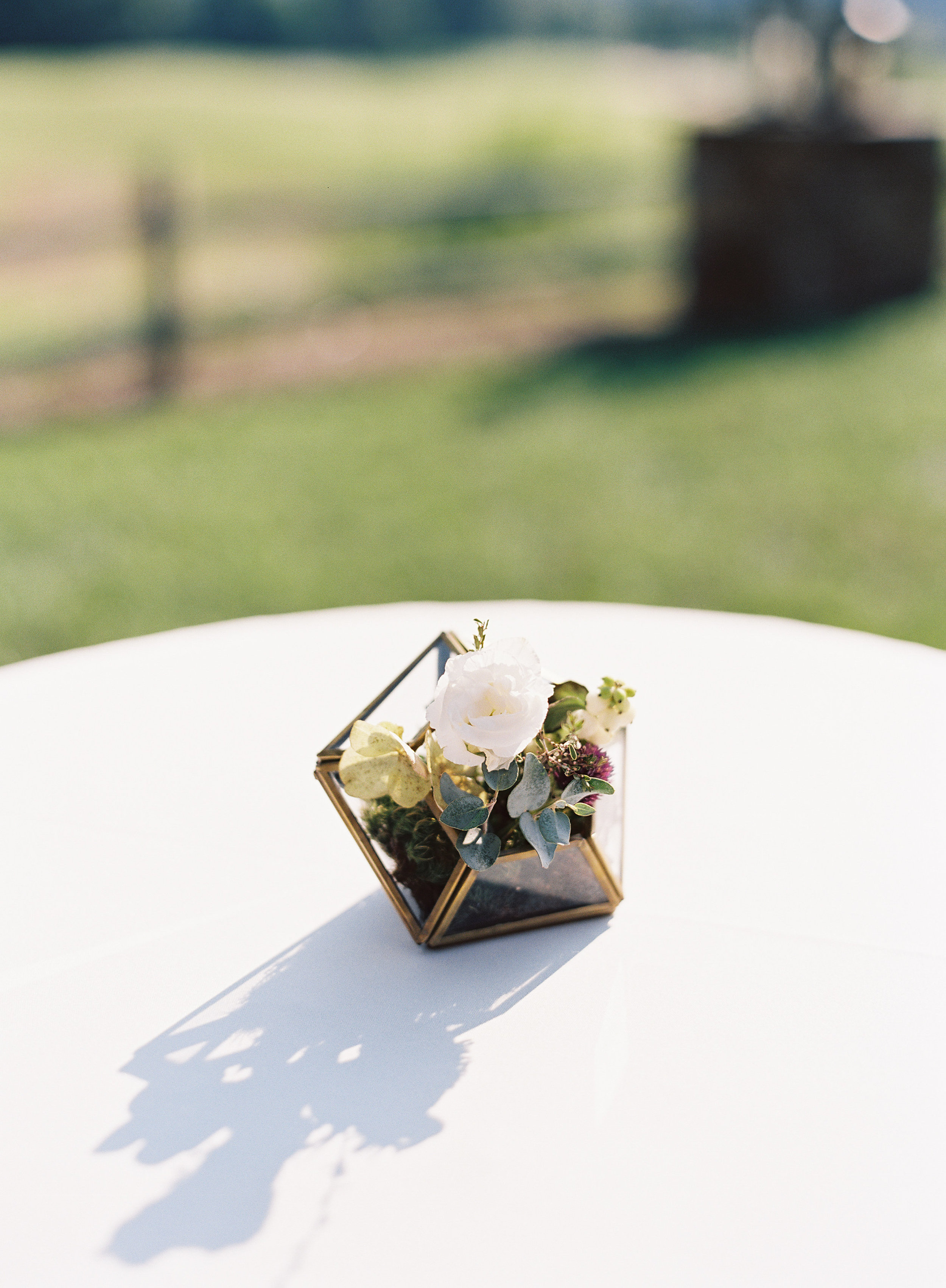 Small Gold Diamond Terrariums