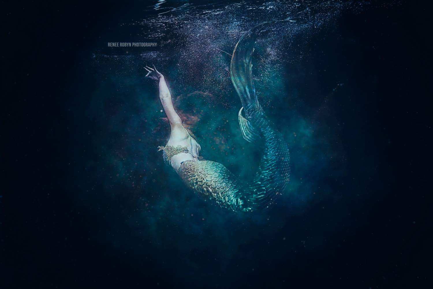 Catalina Mermaid Green Tail 2 by Renee Robyn Photography.JPG