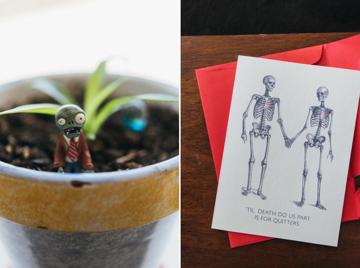 elopement-arnold-arboretum-boston0002.jpg