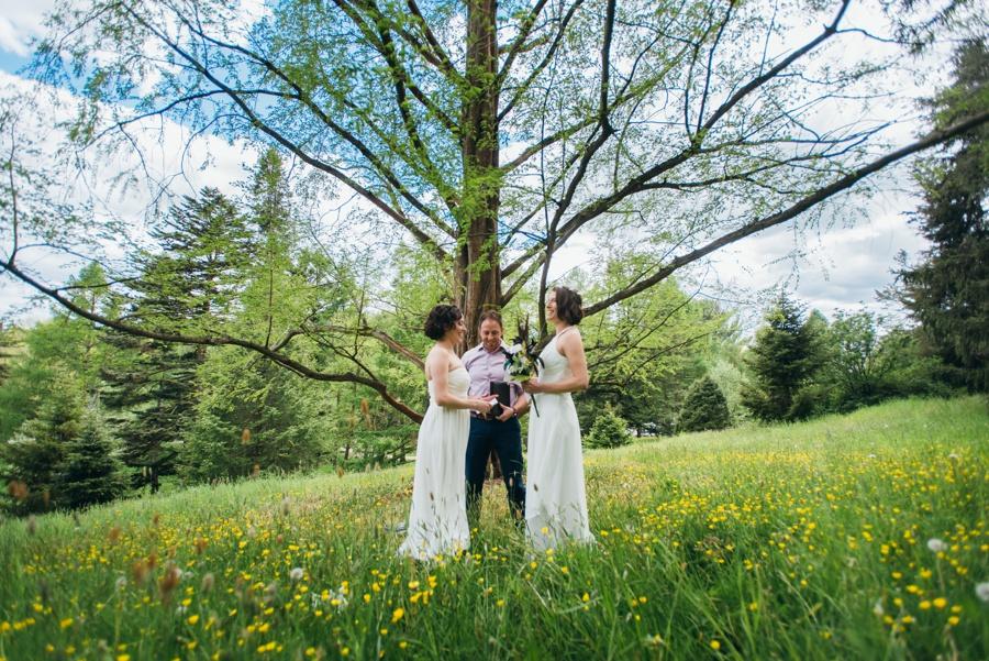 elopement-arnold-arboretum-boston0029.jpg