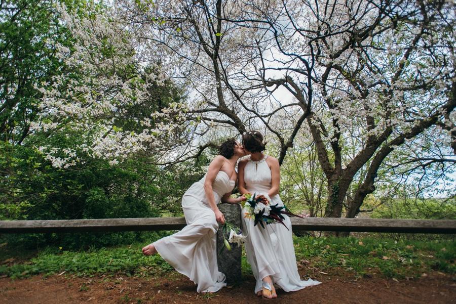 elopement-arnold-arboretum-boston0048.jpg