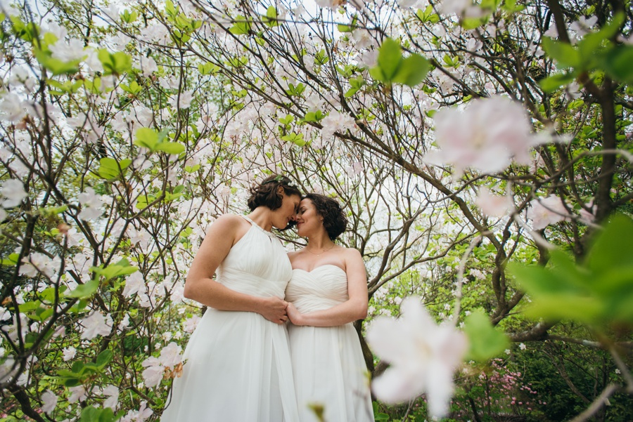 elopement-arnold-arboretum-boston0050.jpg
