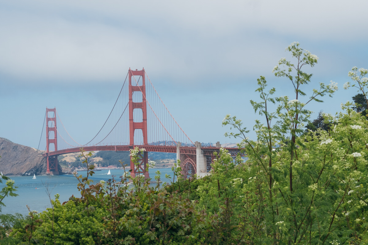 presidio-sf-golden-gate-club-wedding-emilychris0022.JPG