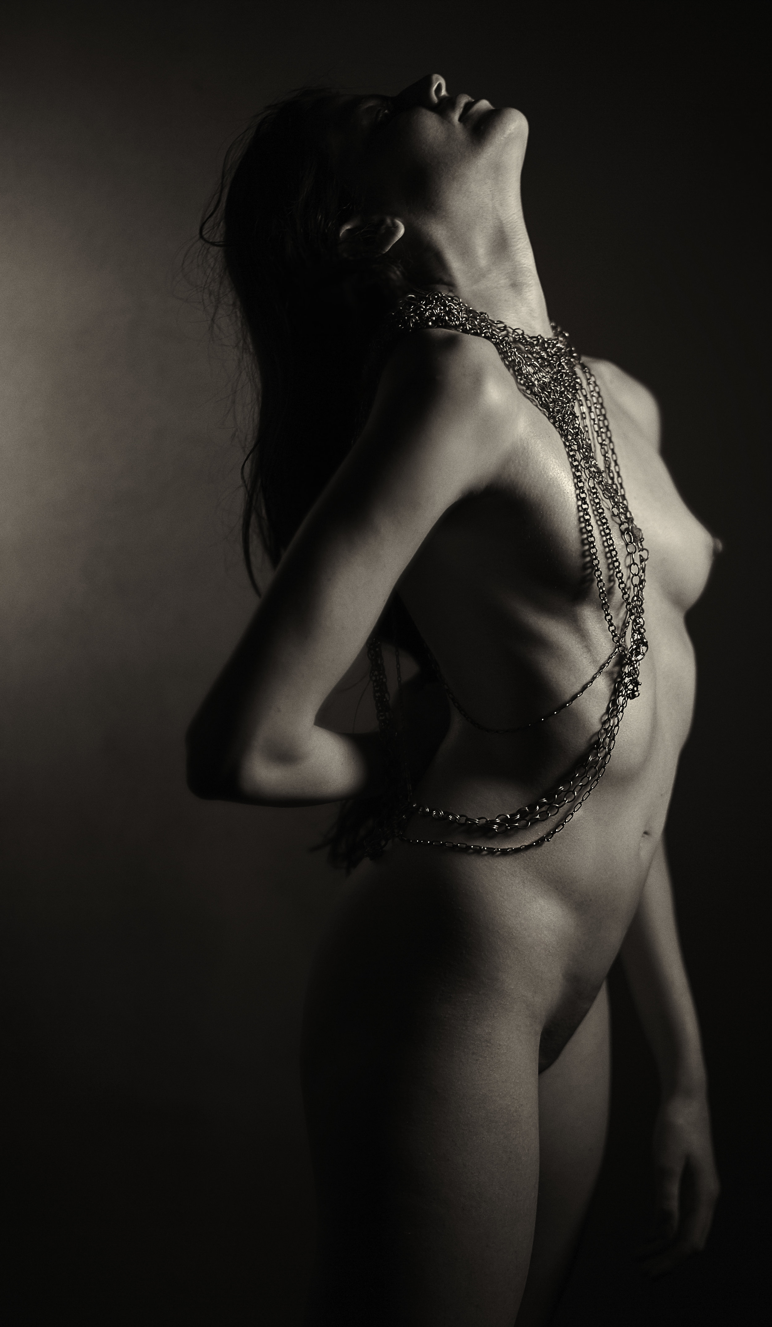 Fays_Chains_21966.jpg