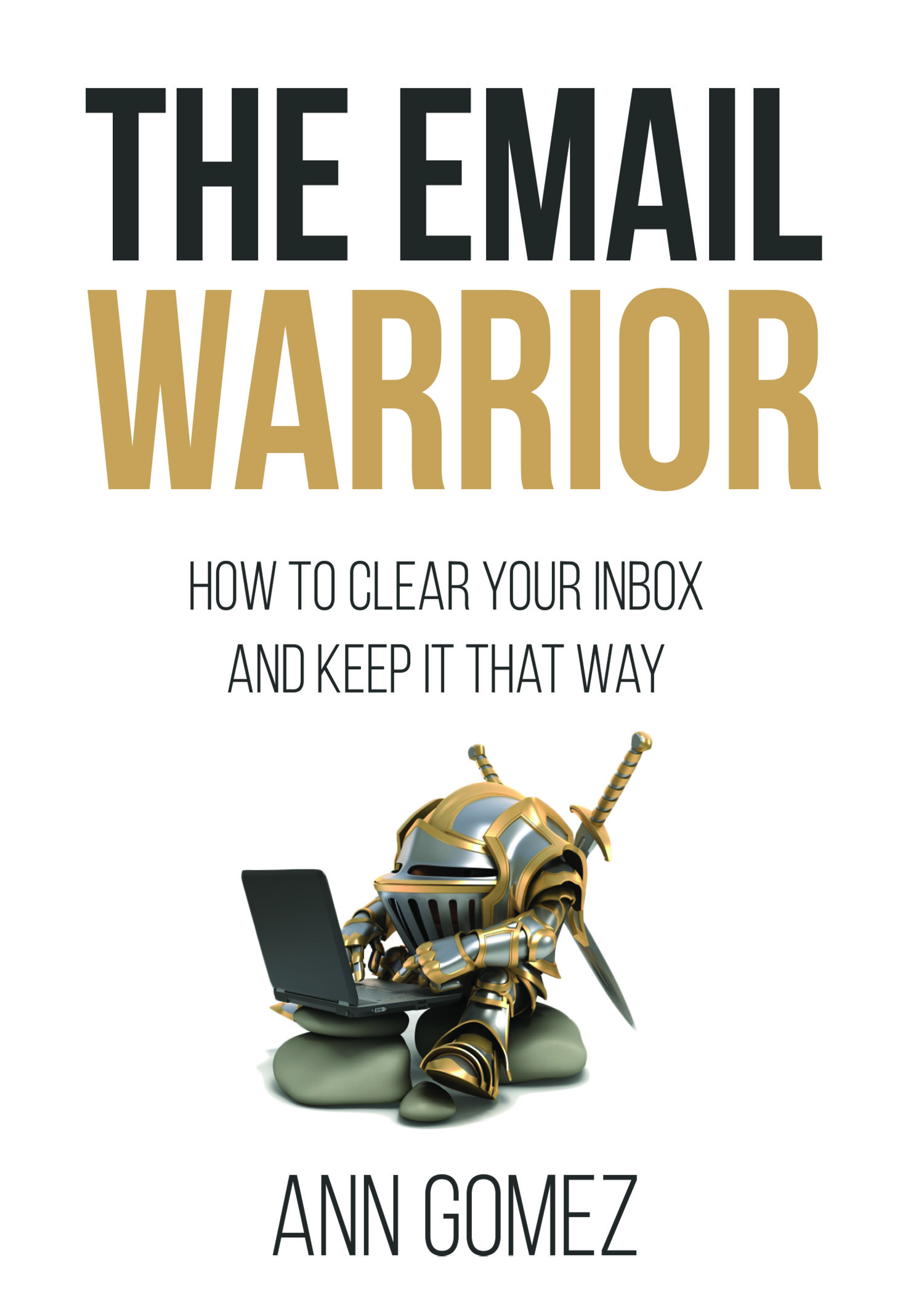 The Email Warrior  by Ann Gomez, Published 2017