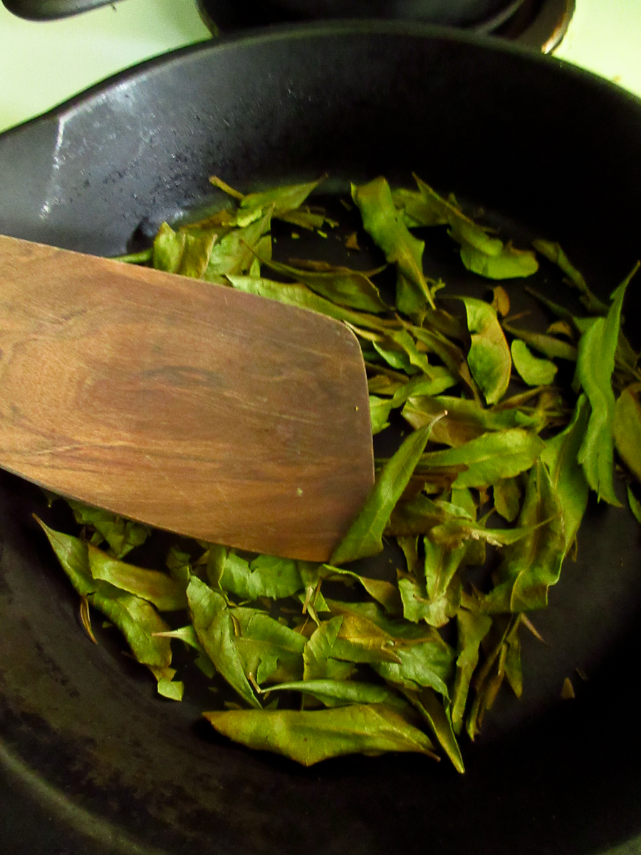 Morella Bayberry Tea -2434.jpg