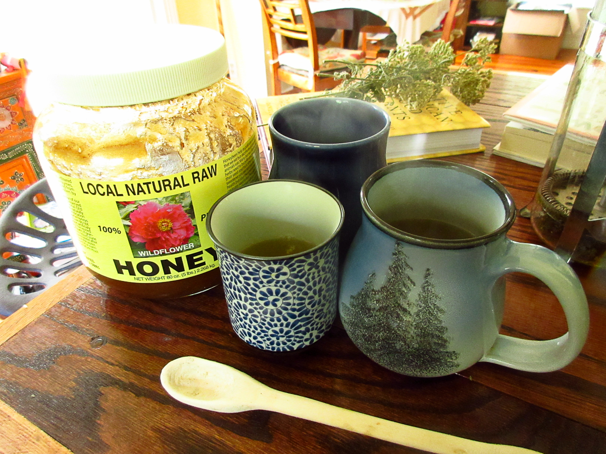 Morella Bayberry Tea -2444.jpg