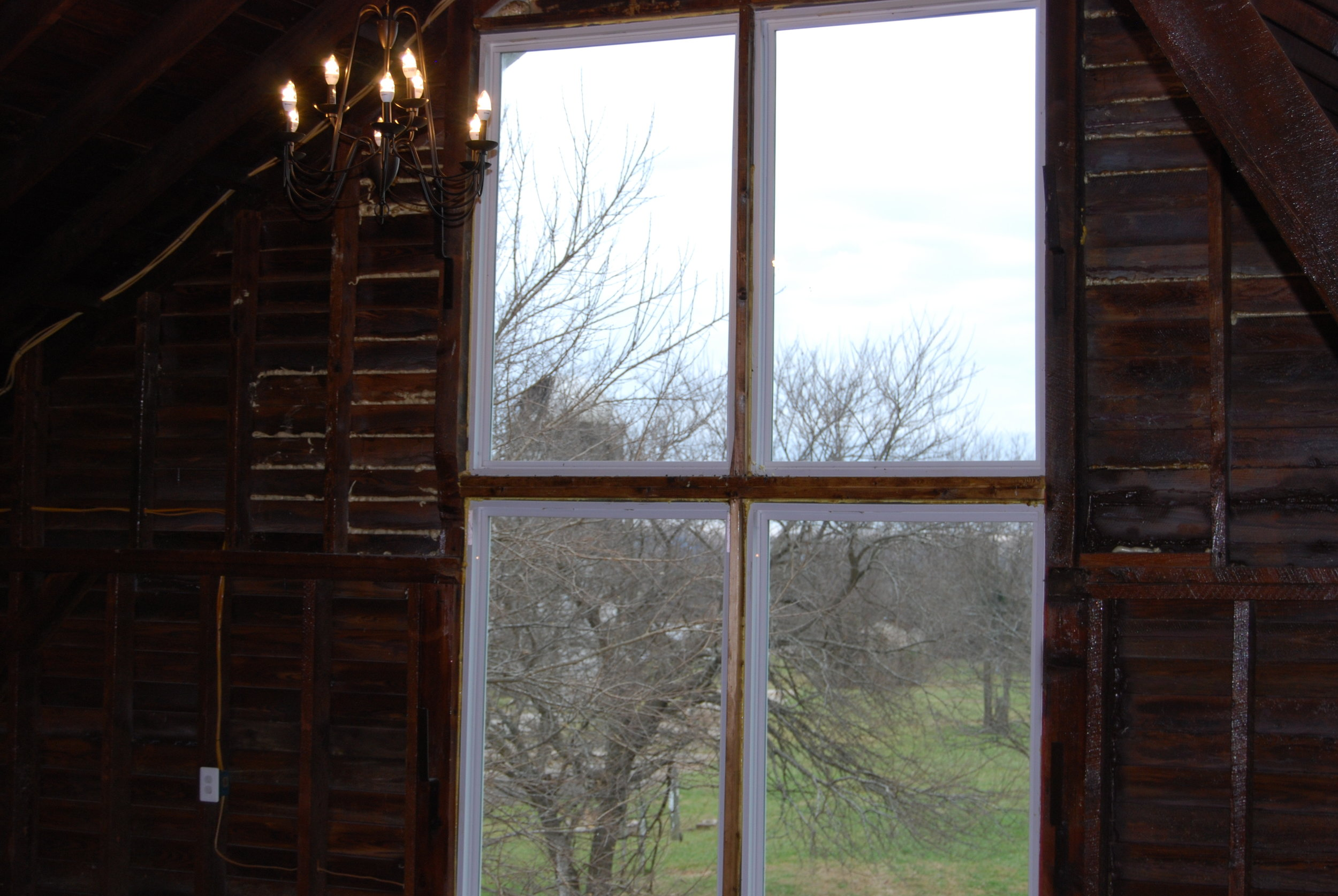 Upstairs window with trees in the view.JPG