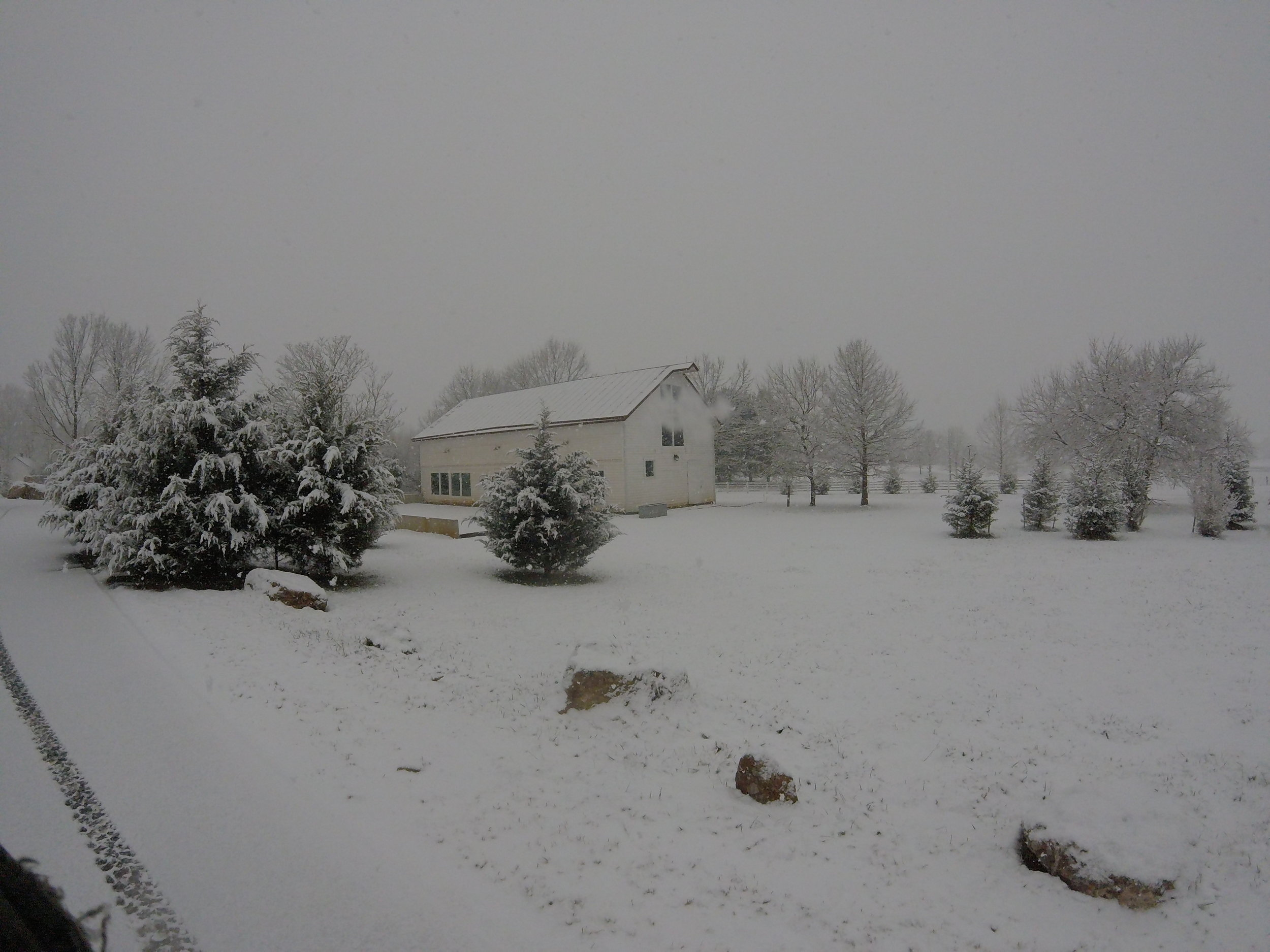 Hopkins Grove with snow from the side.JPG