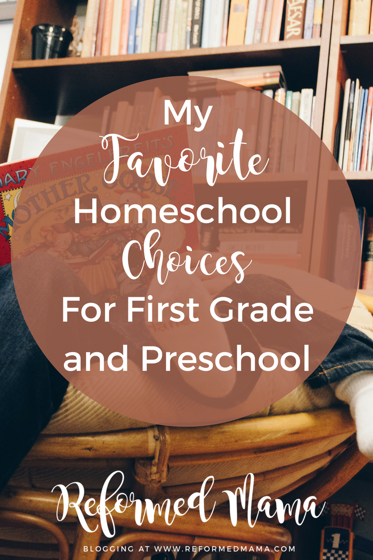 My Favorite Homeschool Picks for First Grade and Preschool (2017-2018 School Year) - Some Unique Ones here!