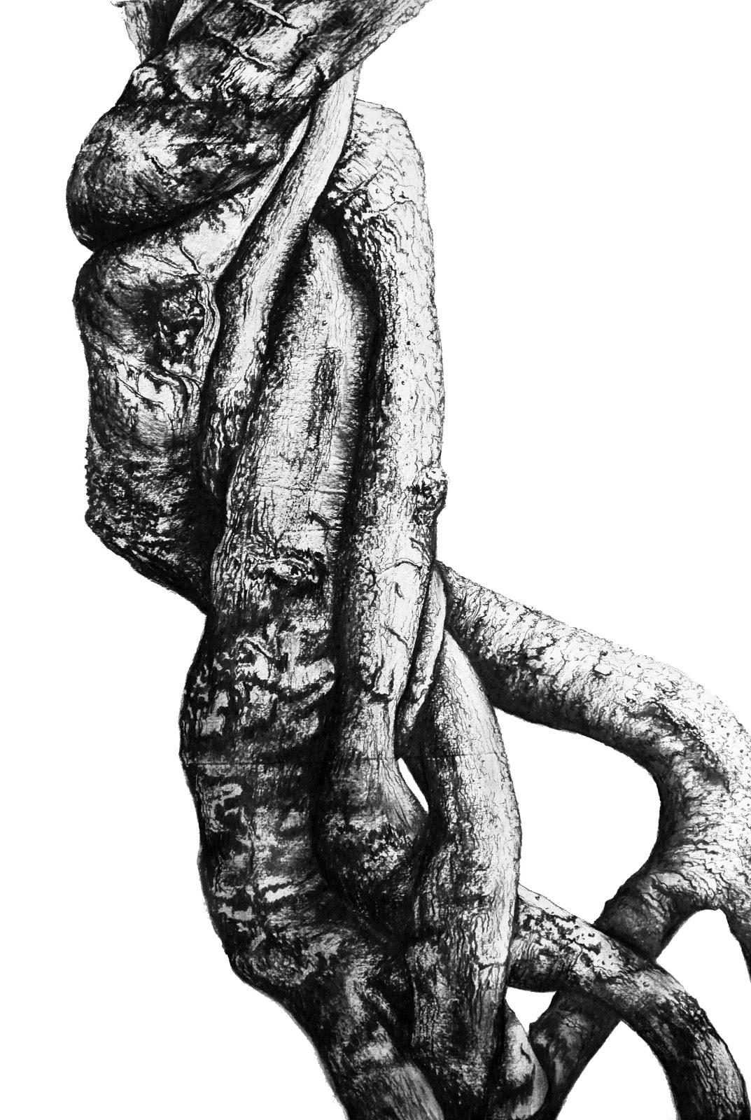Embrace (El abrazo), 2013