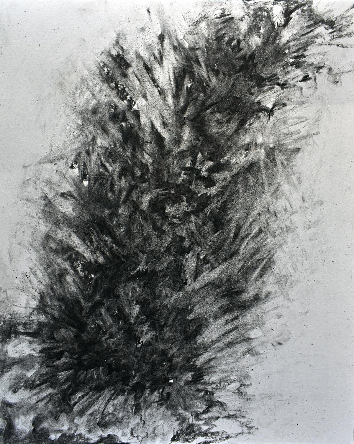 Surfaces Demarcations (Gravel II), 2018