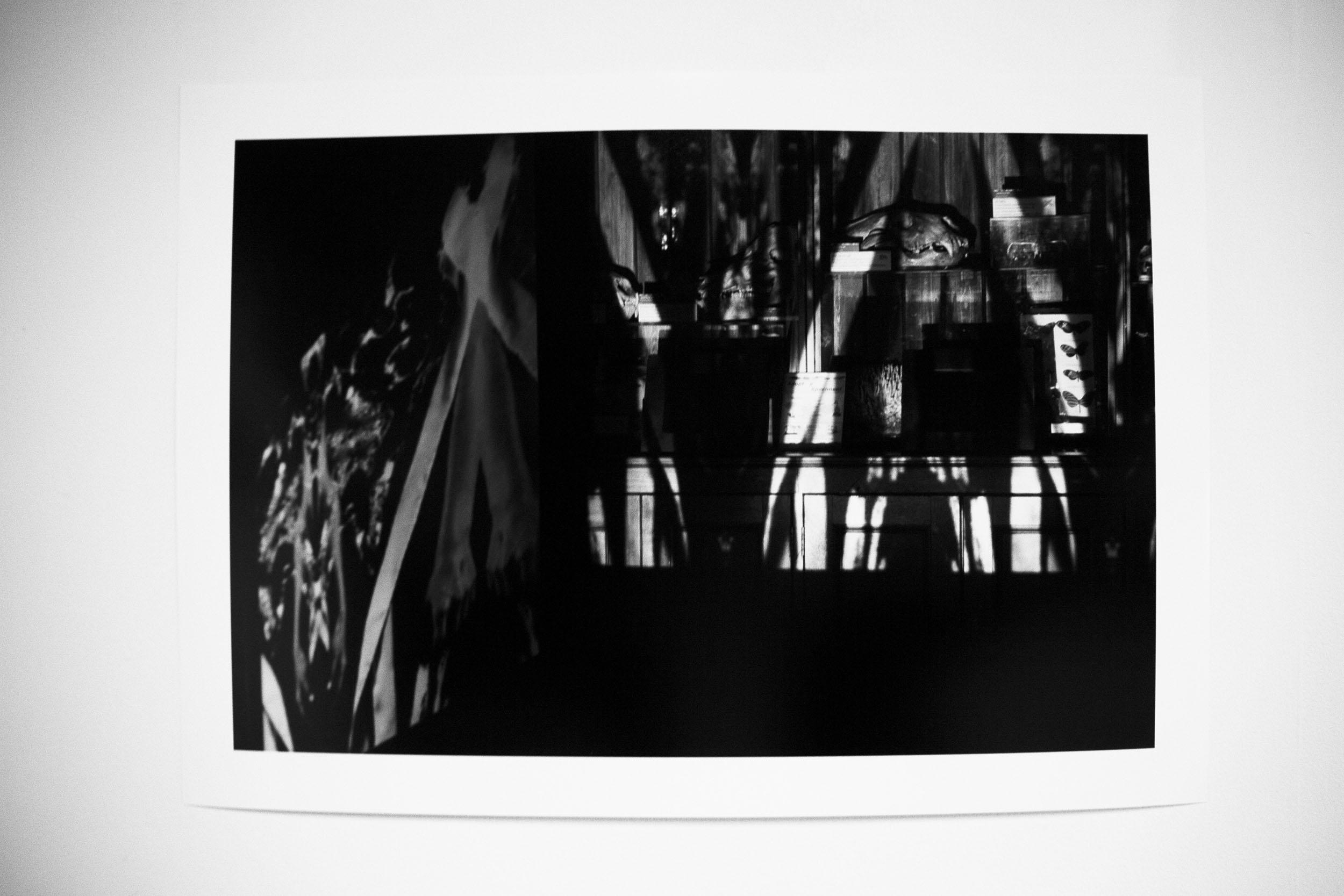 exhib1.jpg