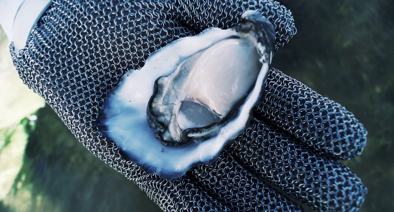 oyster glove.jpg