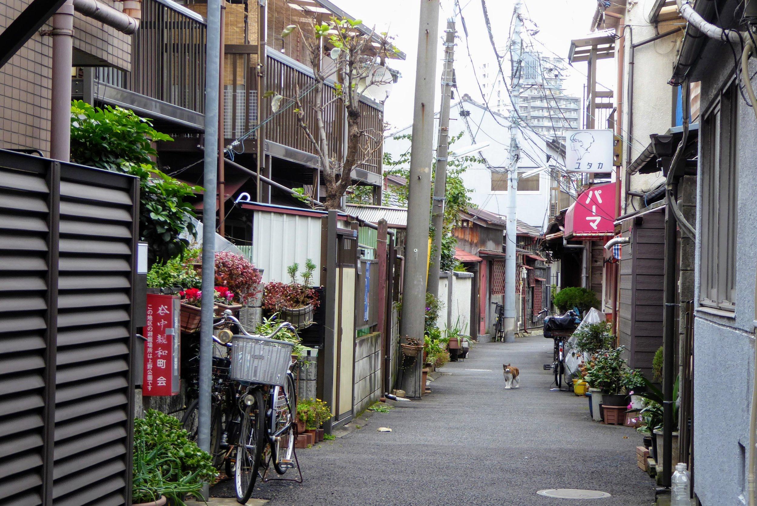 Casco Antiguo Tokyo