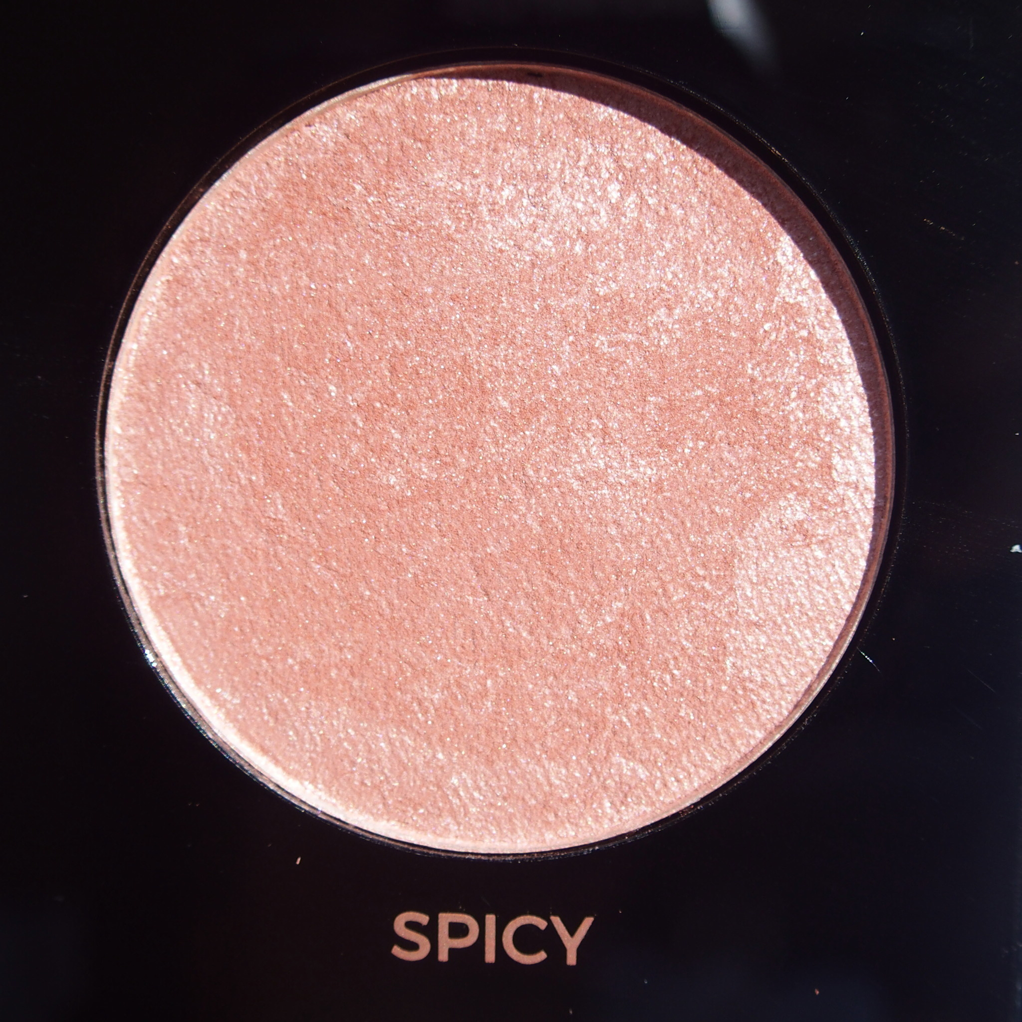 Makeup Revolution Pro HD Amplified Get Baked Palette swatches - Spicy