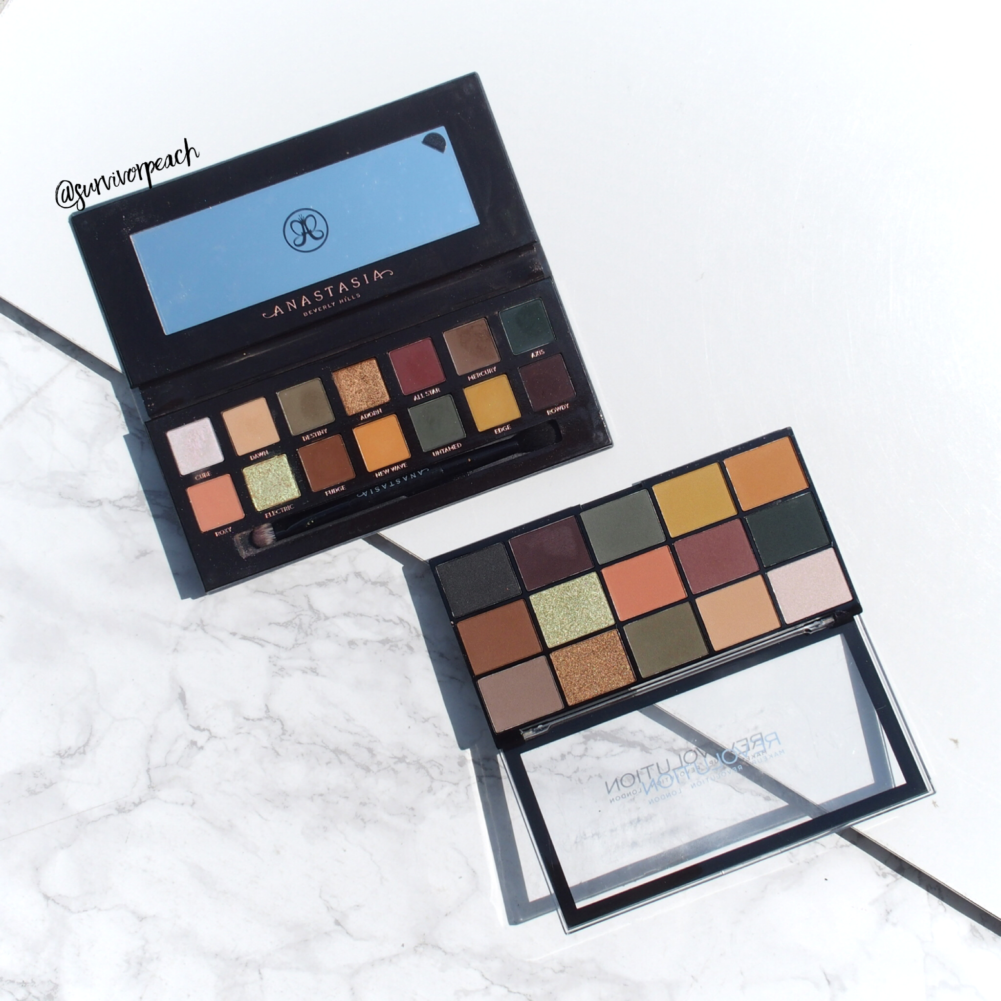 Revolution Re-loaded paletteIconic Division & Anastasia Subculture palette