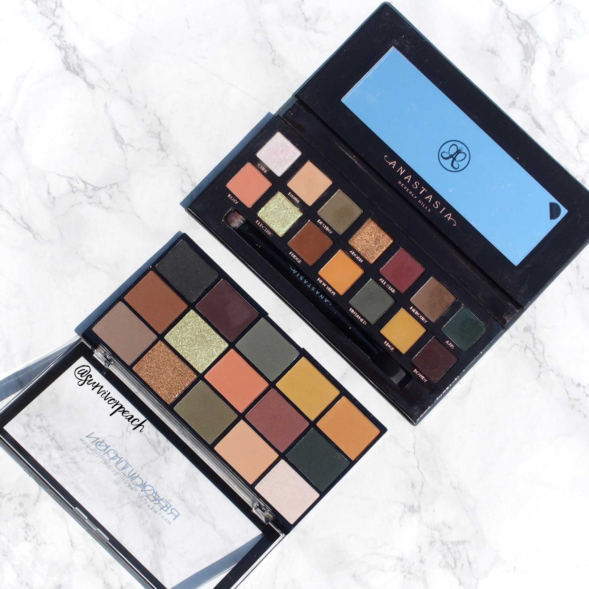Revolution Re-loaded palette Iconic Division & Anastasia Subculture palette