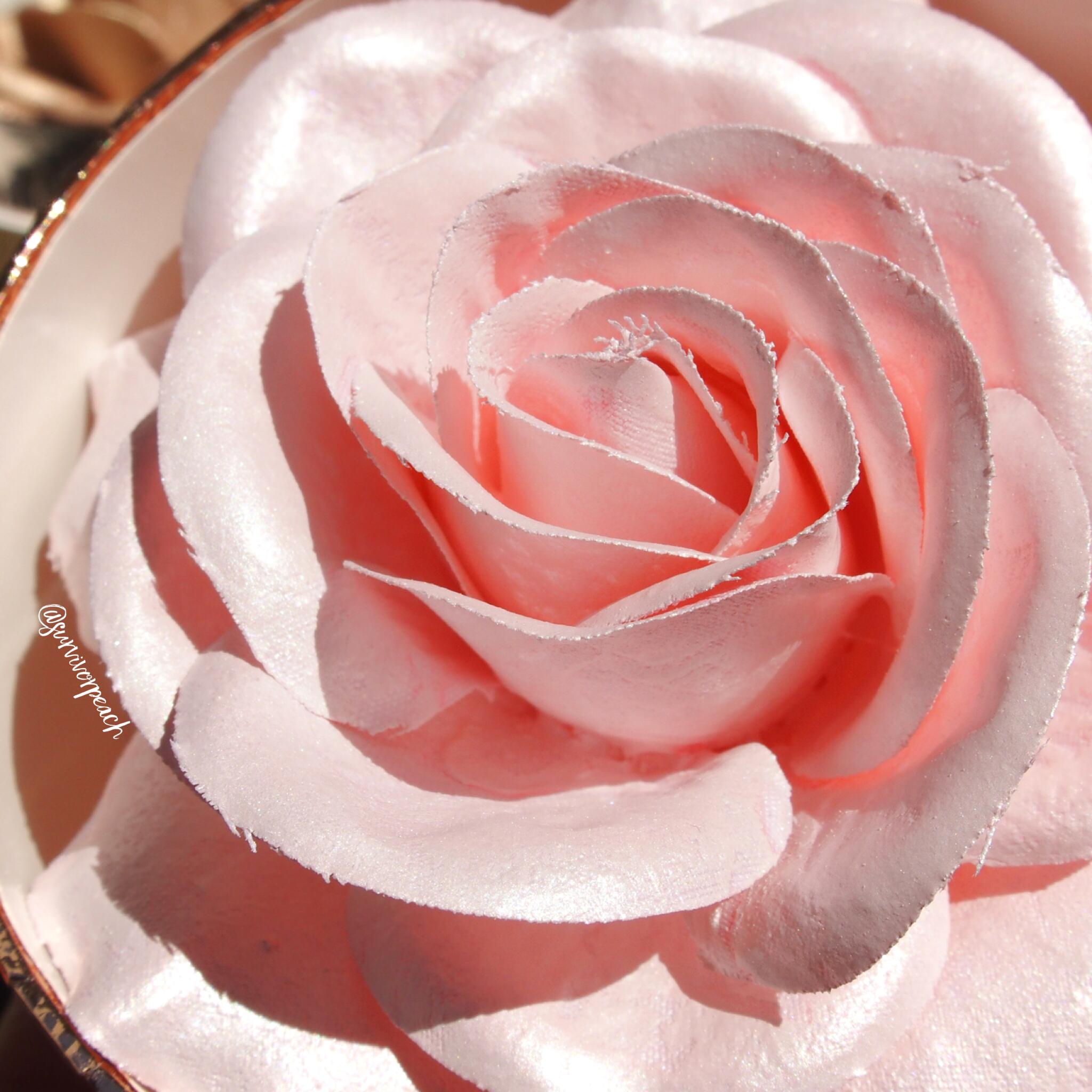 Lancome La Rose a Poudrer