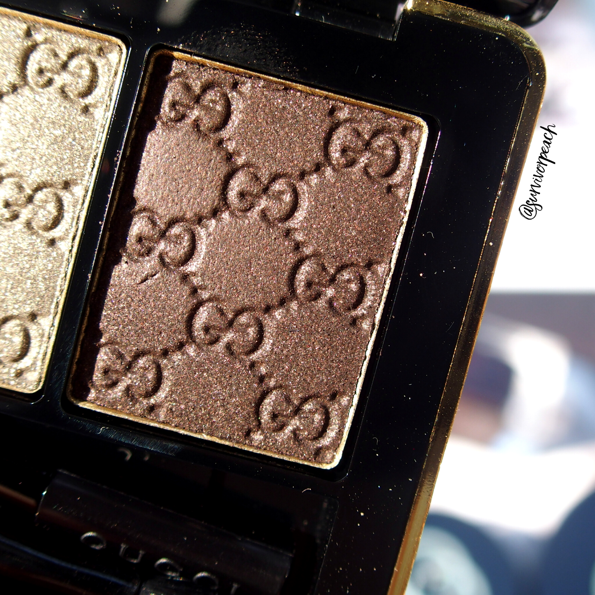 Gucci Fume Magnetic Color Shadow Duo - right (in sun light)