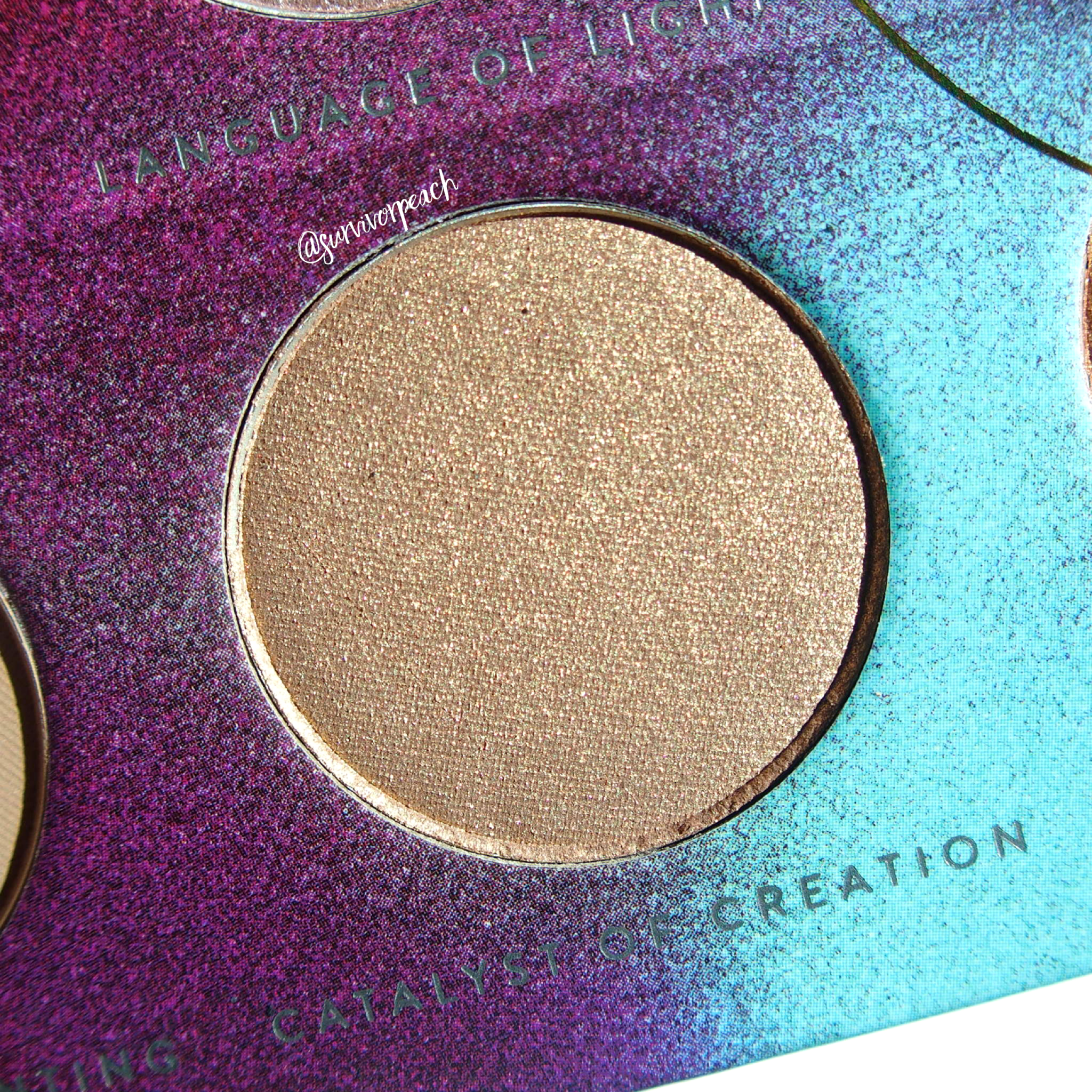 Zoeva Eclectric Eyes Eyeshadow palette - Catalyst of Creation