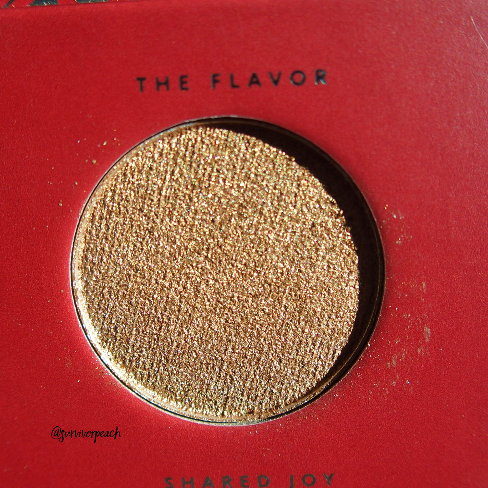 Zoeva Spice of Life Eyeshadow Palette - The Flavor