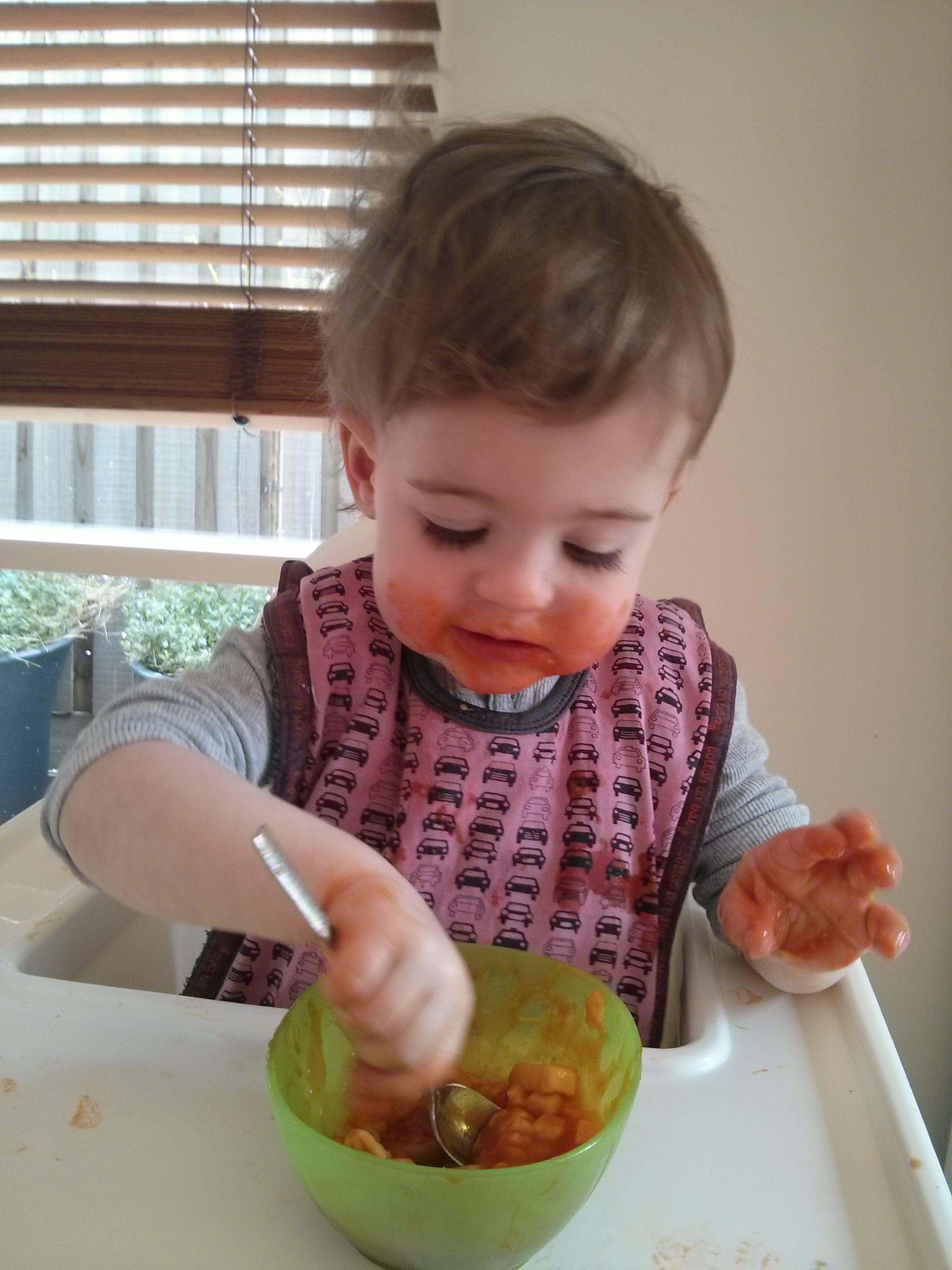 fussy eating toddler