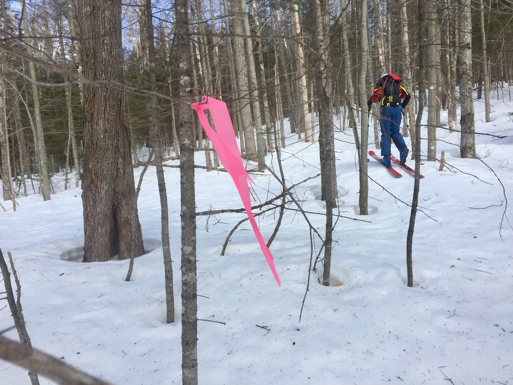 Doublehead Ski Trail - Project Status: APPROVEDLevel: FEDERALDate: July 29 - July 30Time: 8am - 4pmLocation:Black Mountain Parking LotContact: Tyler RayRSVP: Facebook