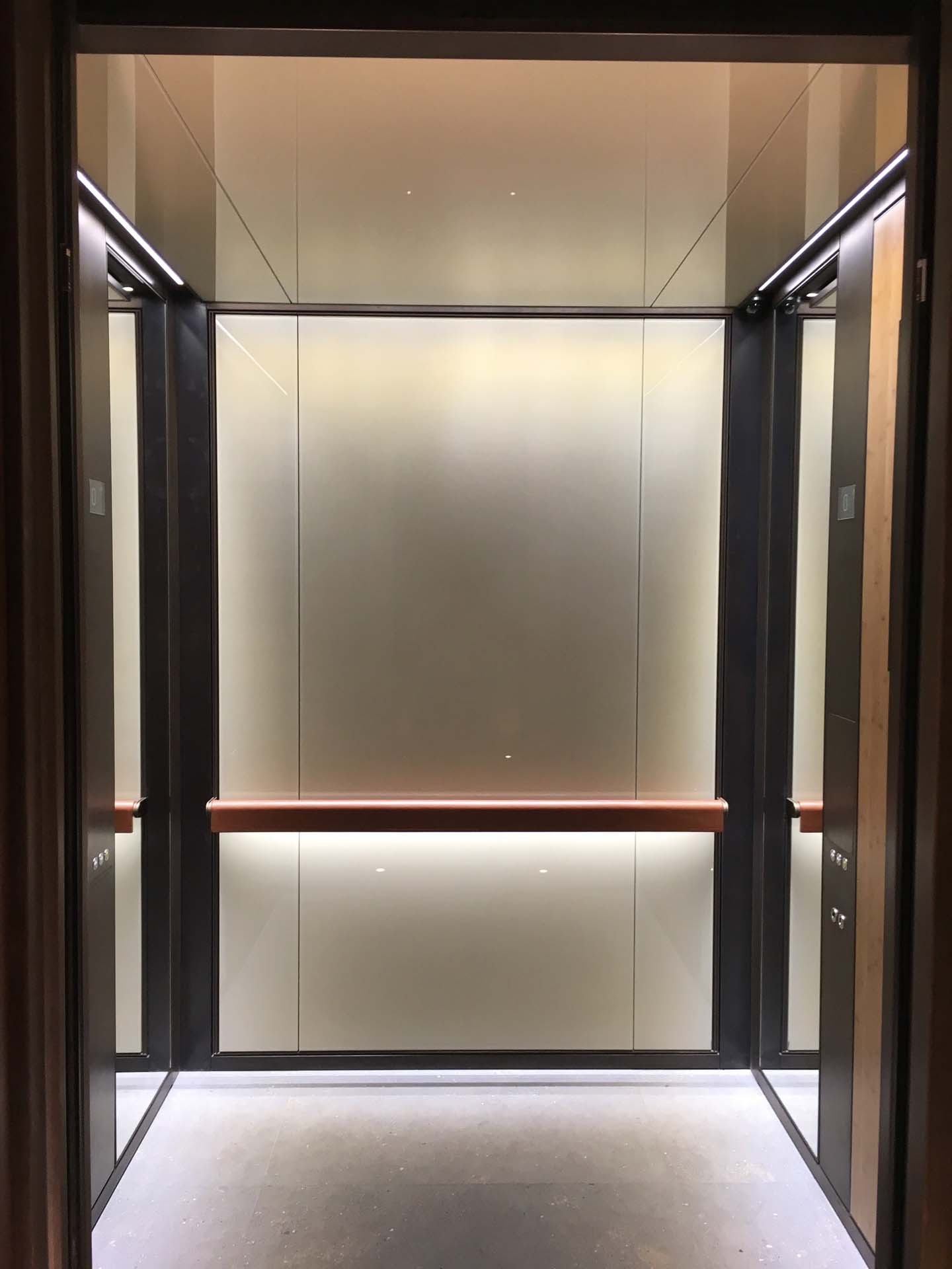 1 Building 6 Patinated Bronze lifts with Champange mesh glass and Bamboo Veneers, light tan leather handrail .jpg