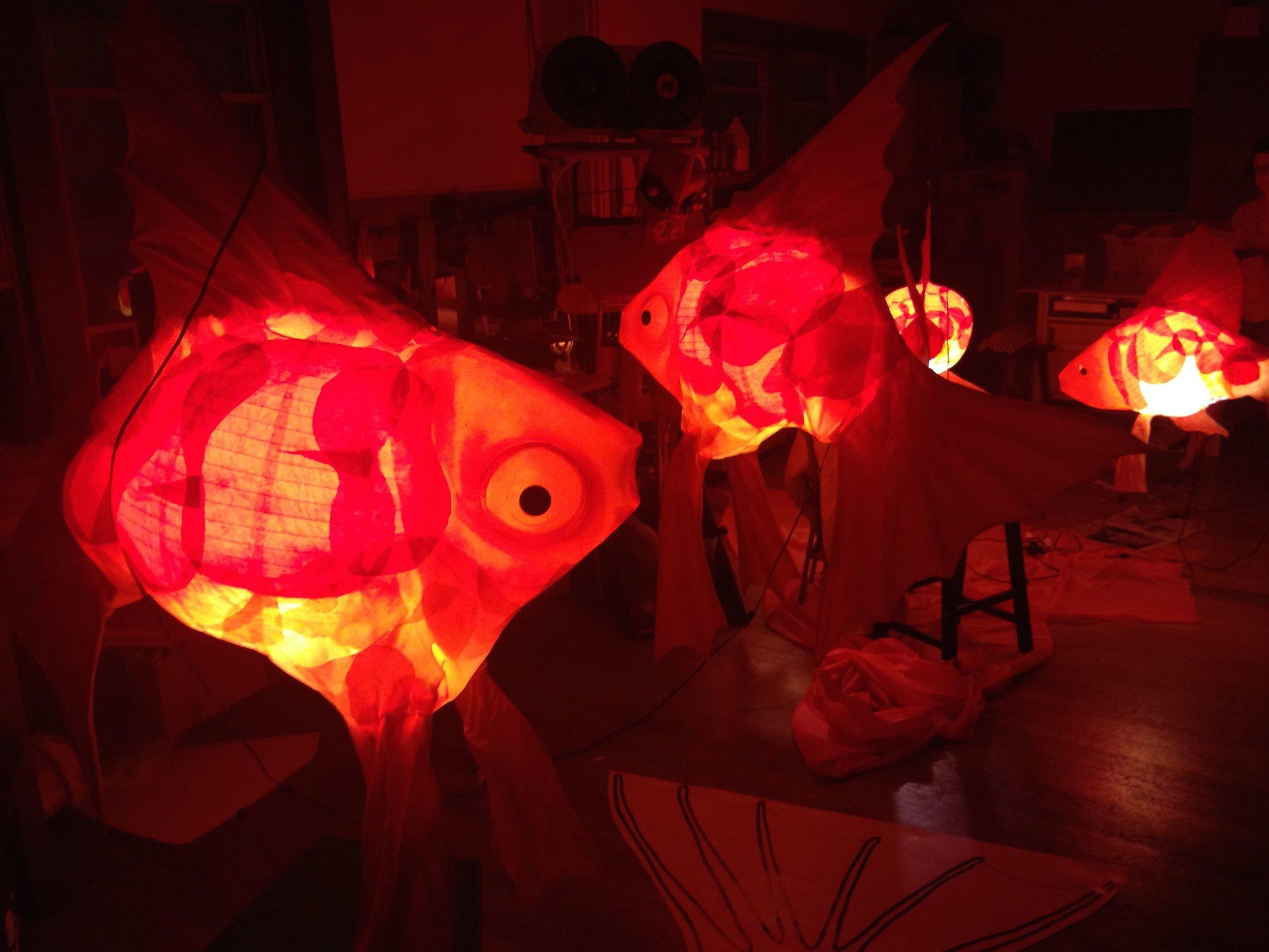 Goldfish for Copper & Kings Distillery