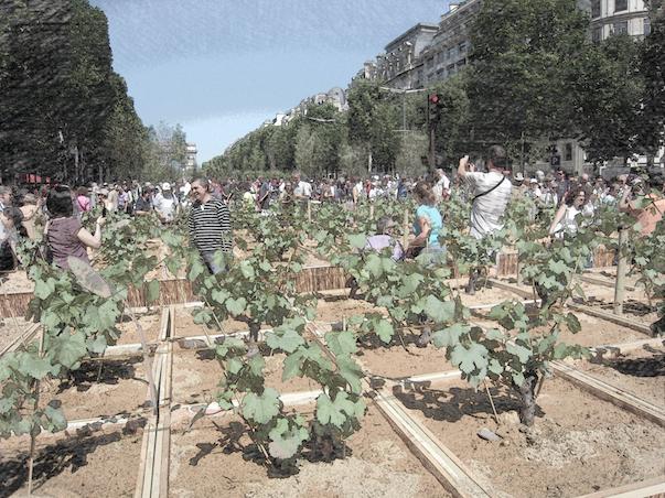 Fiction jardins (2).png