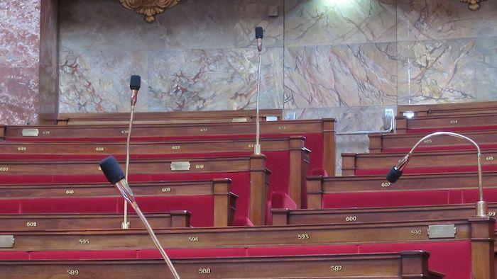 Assemblée nationale  (Crédit Clément Baillon)