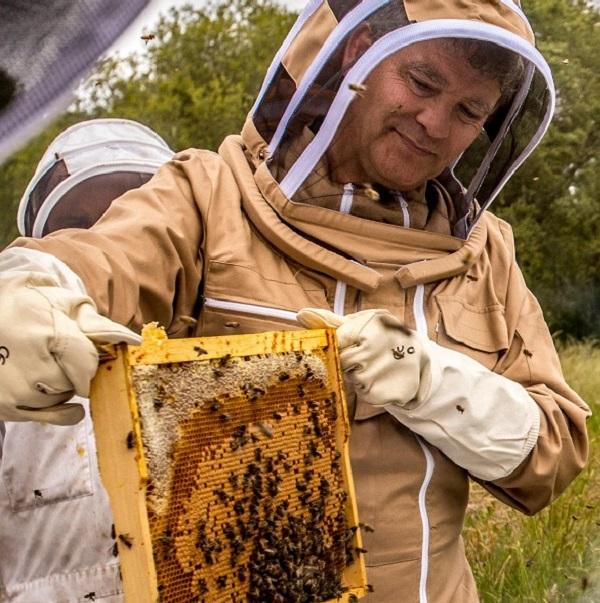 Arnaud Montebourg - L'apiculteur 2.0
