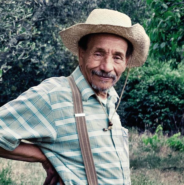 Pierre Rabhi - Écologie et consommation