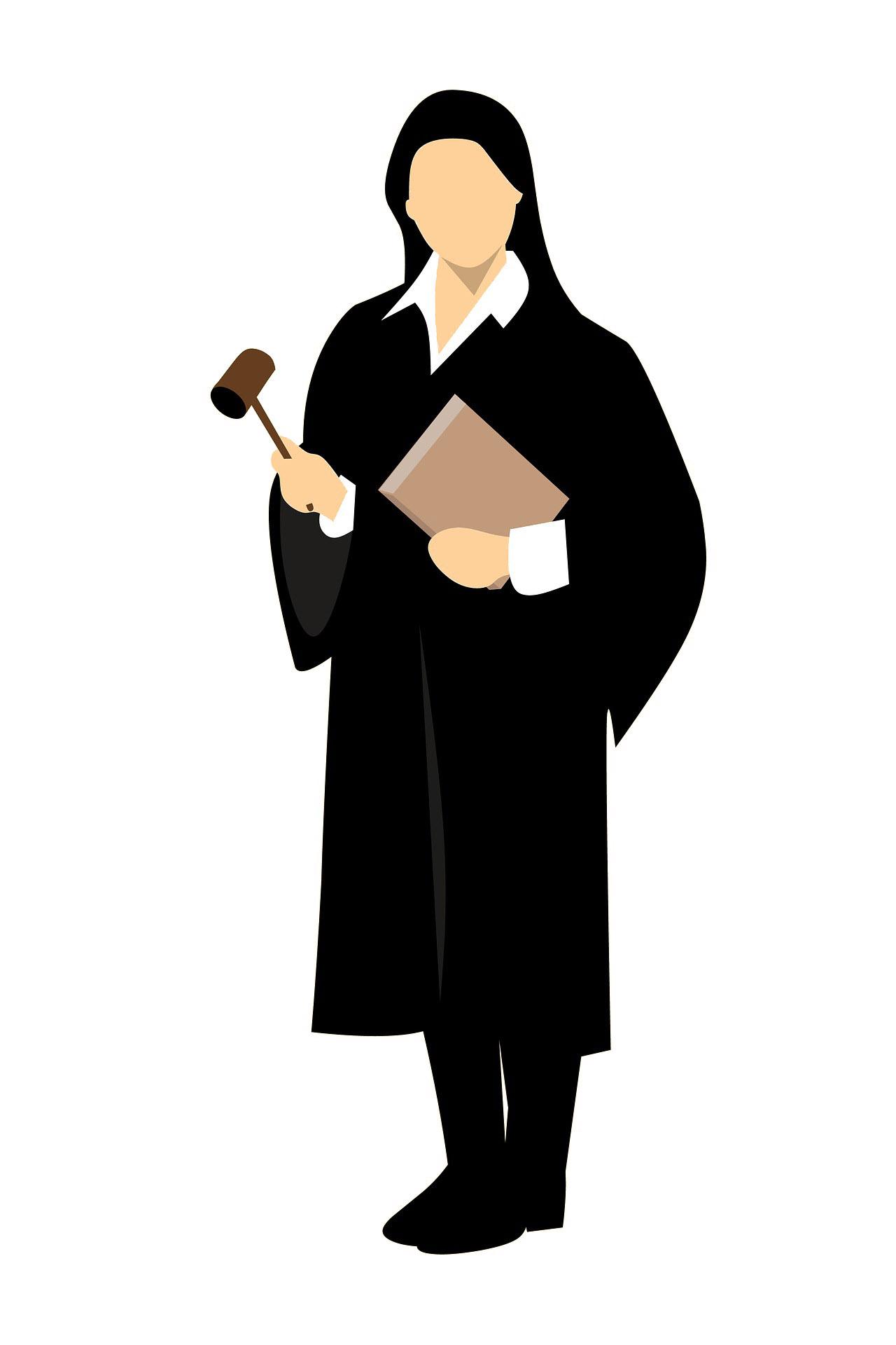 Juge illustration.jpg