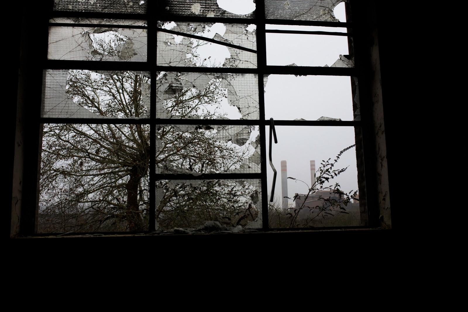 Intérieur d'une friche à Rombas. Crédits photo : Laura Wojcik