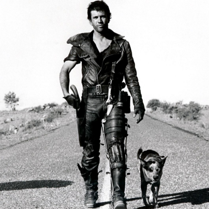 Spectacle grandiose garanti, l'apocalypse s'est imposée comme un genre à part entière de l'histoire du cinéma. De La Cité foudroyée en 1924 à Hunger Games en 2012, les films et séries apocalyptiques témoignent des peurs et des idéologies qui marquent leur temps. - Mel Gibson dans le film Mad Max de George Miller (1979)