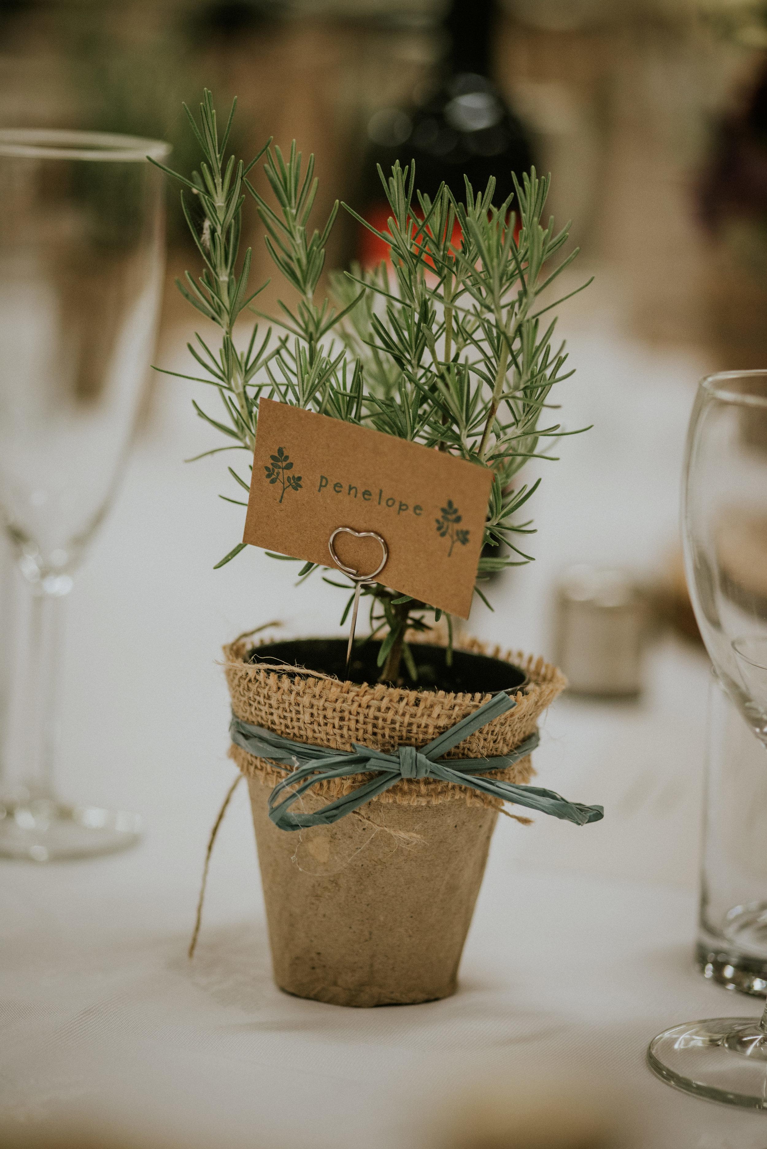 Wedding - 407.jpg