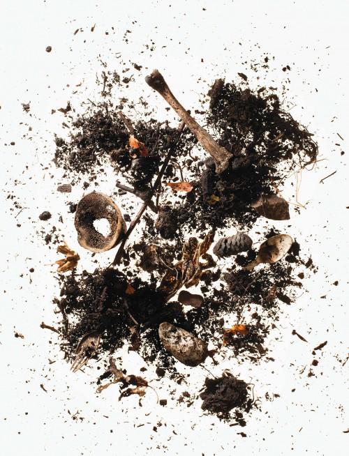 Compost-4-500x654.jpg