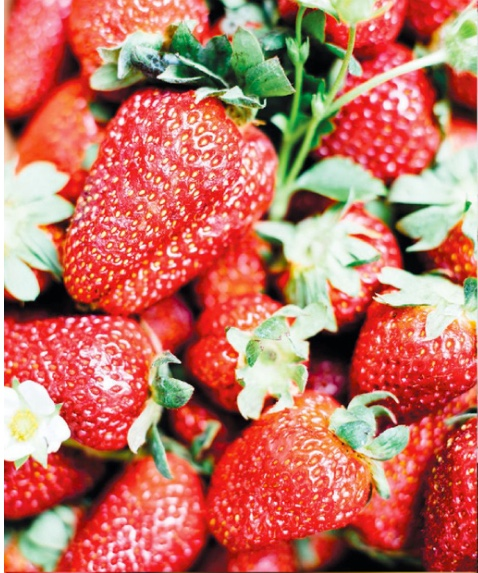 strawberries.jpeg