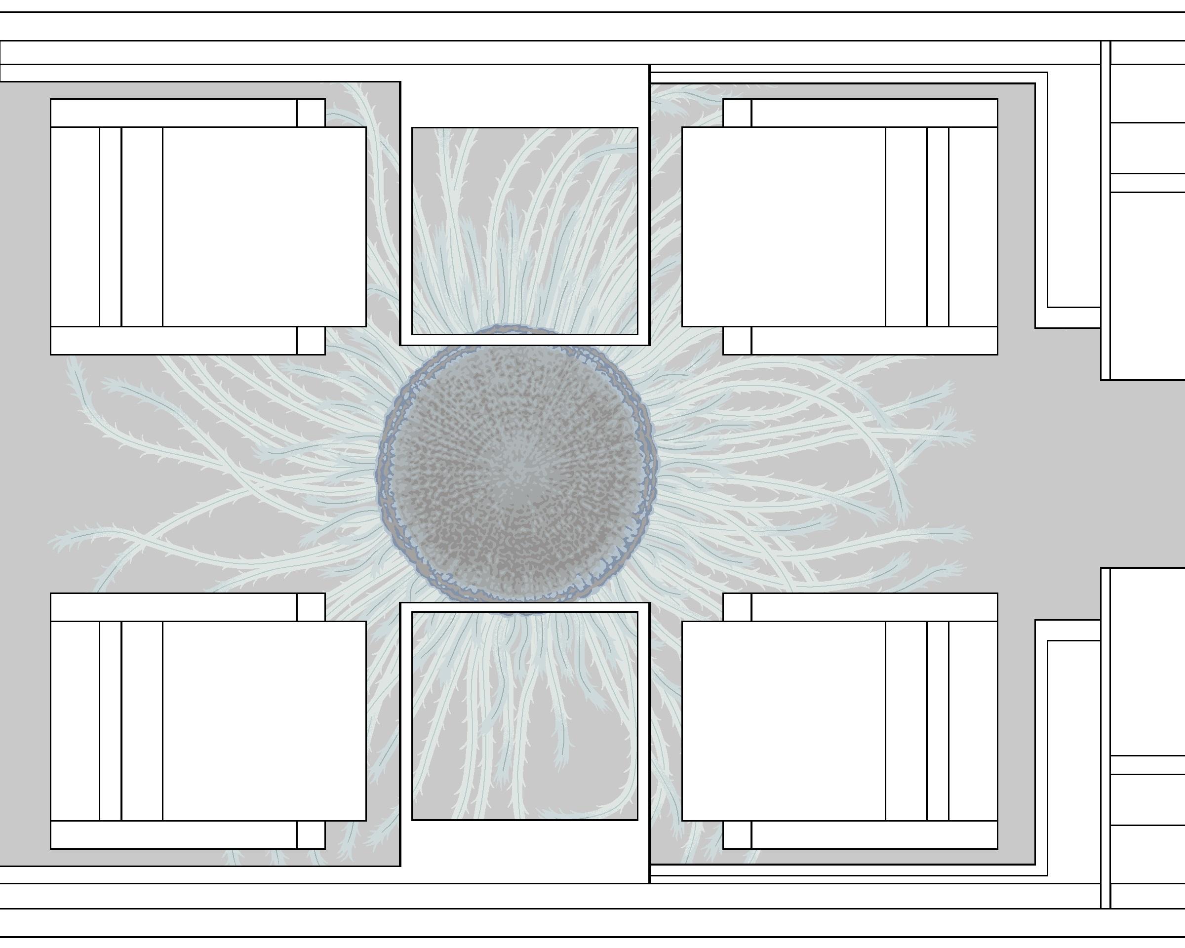 AV-Medusa I